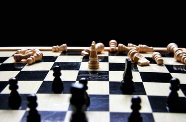 Strategy & Portfolio Consulting